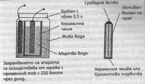 2804-fig2.jpg